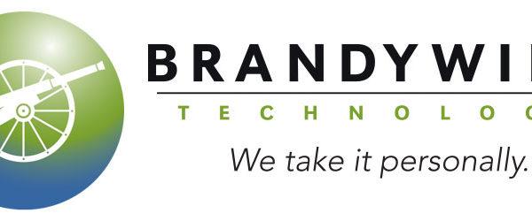 Brandywine Technology - IT Staffing - Logo